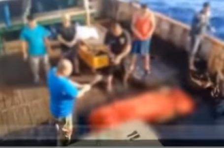 Video Pelarungan ABK WNI dari Kapal Berbendera Cina ke Laut Viral