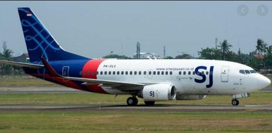 Penyebab Jatuhnya Pesawat Sriwijaya Air Diduga Akibat Elevator yang Copot