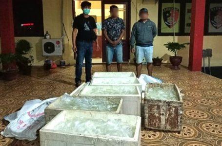 550 kantong minuman keras (miras) jenis cap tikus berhasil berhasil disita oleh satuan Polisi Resor Morowali Utara